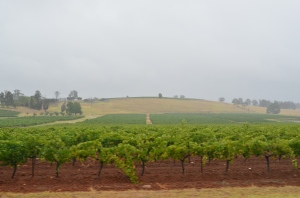 Hunter Valley AU