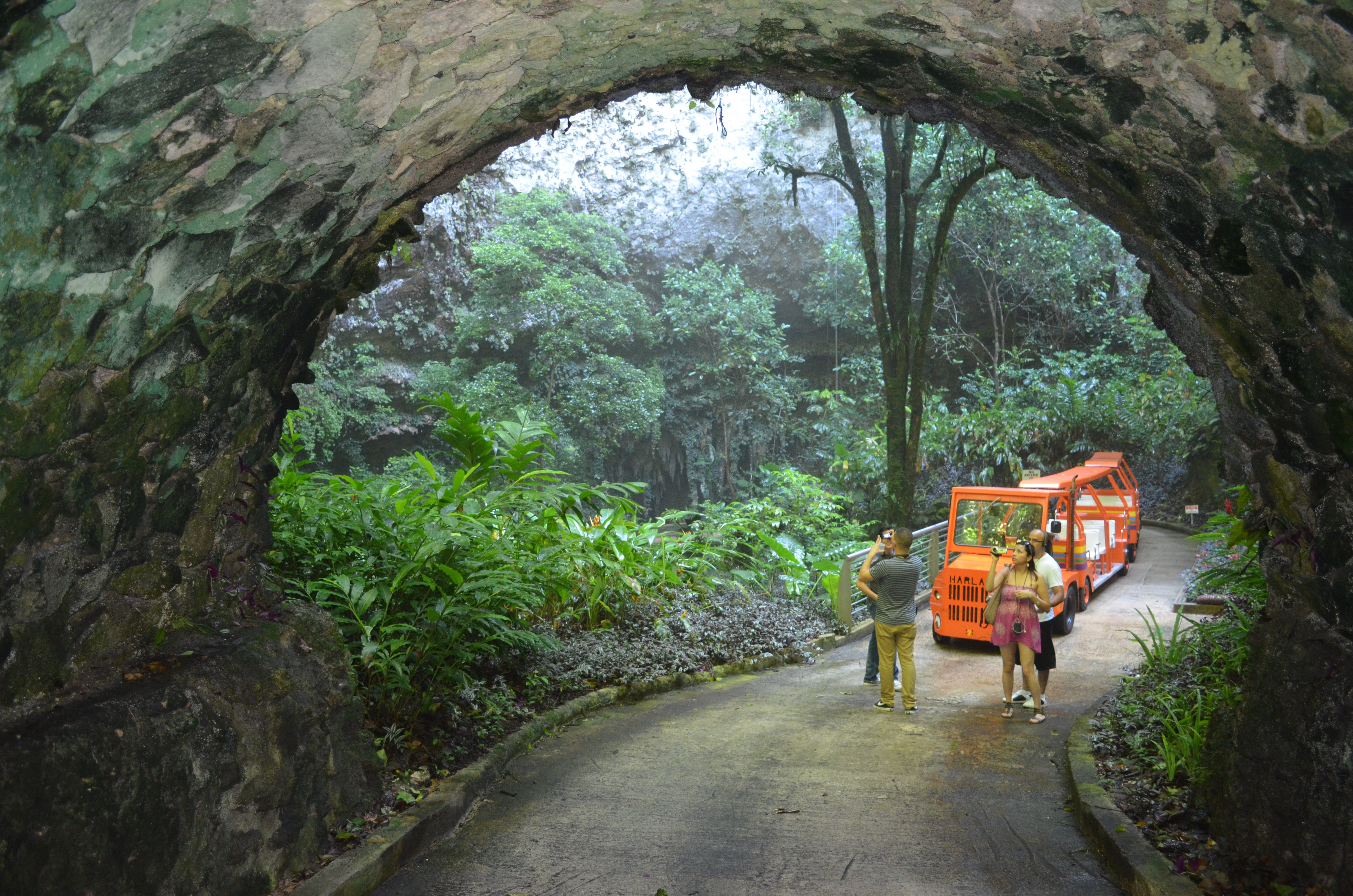 Day trip to rio camuy cave and areceibo observatory for Turismo interno p r