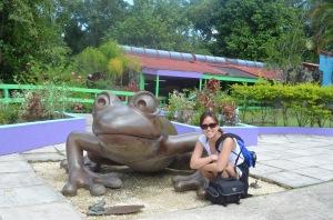 Puerto Rico frog_2011.10.23