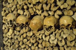 8-skulls lineup catacombs